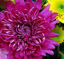 A Bouquet For Mom by Jennifer Hulbert-Hortman
