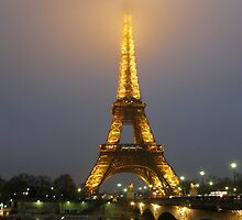 Eiffel Tower by Night by MaggieO