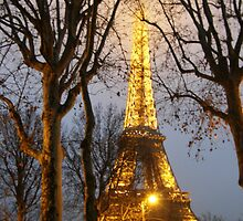 Eiffel Tower Glows on a Winter's Eve by MaggieO