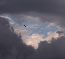 Through the clouds by Vahid Meskoob