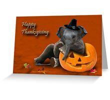 Thanksgiving Pilgrim Elephant Greeting Card
