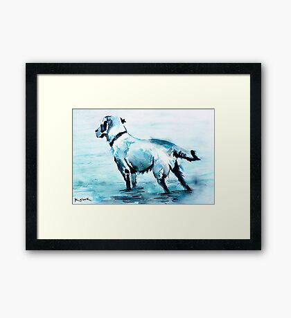 Dune Doggie Framed Print
