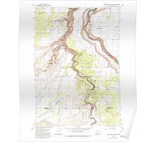 USGS Topo Map Oregon Steelhead Falls 281641 1985 24000 Poster
