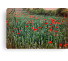 As The Wind Upon The Field Canvas Print