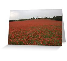 every soldier that has fallen i think their is a flower here for them Greeting Card