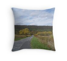 The Road To The Mountain Throw Pillow