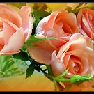 Peachy Roses by debbiedoda