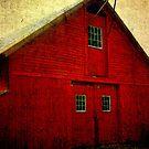 Bronson's Red Barn Vintage by Debbie Robbins