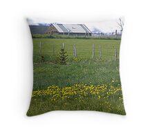 Once Upon A Barn Throw Pillow