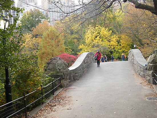 Central Park Bridge, Fall Colors  by lenspiro