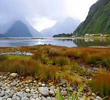 Milford Sound. South Island. New Zealand. (4) by Ralph de Zilva