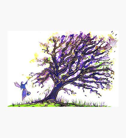 Fairy Dust Tree Photographic Print