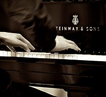 Concert Pianist by Renee Hubbard Fine Art Photography