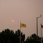 Albuquerque NM Smokey Sun by JanetBethuy