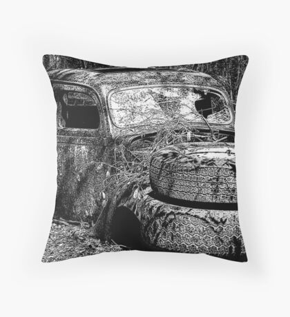 Fabulous Find Throw Pillow