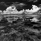Seascape, Vanuatu by Chris Westinghouse