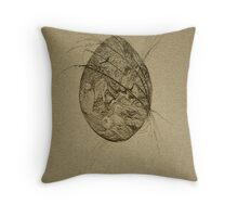 """The Egg"" Throw Pillow"