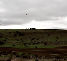 Hang gliders Chapman Valley Geraldton WA by Tawnydal