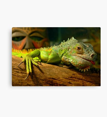 My What Long Nails You Have Canvas Print