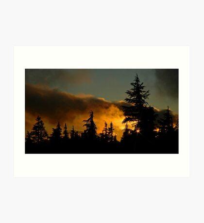 Sunset At Timberline Art Print