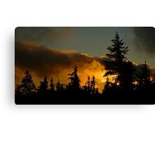 Sunset At Timberline Canvas Print