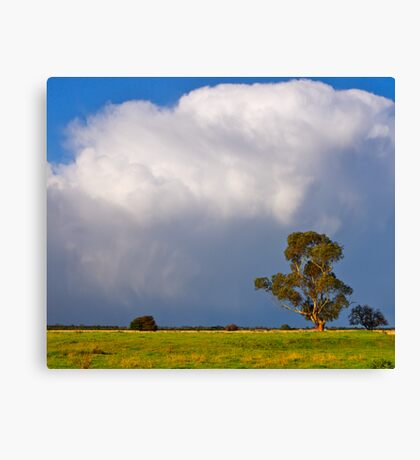 Storm clouds over Cardinia, Gippsland, Victoria. Canvas Print