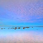 Into the Blue - Cleveland Point Qld by Beth  Wode