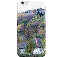 An allegory of colour iPhone Case/Skin