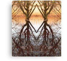 Homeless swamp Canvas Print