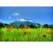 Salzburg Poppies Photographic Print