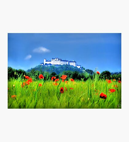 Salzburg Poppies Photographic Print