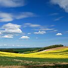 Hampshire Spring Landscape by photontrappist