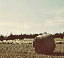 Hay bale lying under the sky by Emma Schroeder