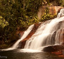 Terrace Waterfall by pacom