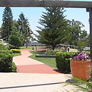 Gardens at Picnic Point Toowoomba Q by Alison Murphy
