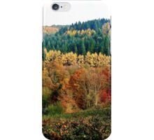 Allegory of colour iPhone Case/Skin