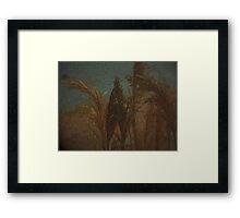 Remembering Rembrandt Framed Print