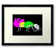 Brightly Colored Ant Framed Print