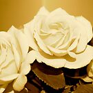 Roses (sepia) by Lou Wilson