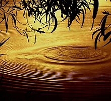 Honey Ripples by Donuts