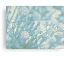 Blue Pastel Alliums Metal Print