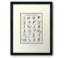 alphabetter - plants Framed Print