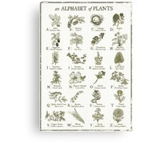 alphabetter - plants Canvas Print