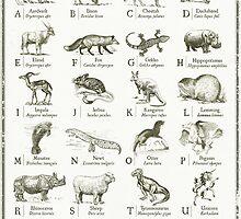 alphabetter - animals by kingslip