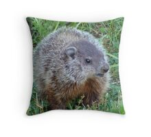 A Surprise Encounter Throw Pillow