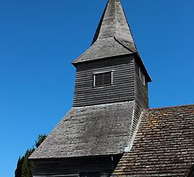 St. Peter's Church.  Newdigate  by Stephen J  Dowdell