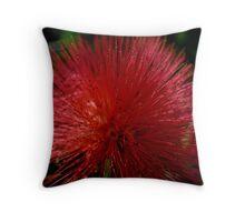 Red Pom Pom Throw Pillow