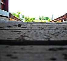 "Inside Bottom of Bridge by Scott ""Bubba"" Brookshire"