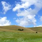 Mount Caburn Panorama by mikebov