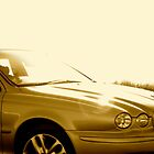Gold Jaguar S Type by Lou Wilson